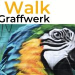 An image of a piece of street art on a wall created by Graffwerk. It's a parrot from a side on view with very vibrant colours. The parrot seems to be eyeing the camera.